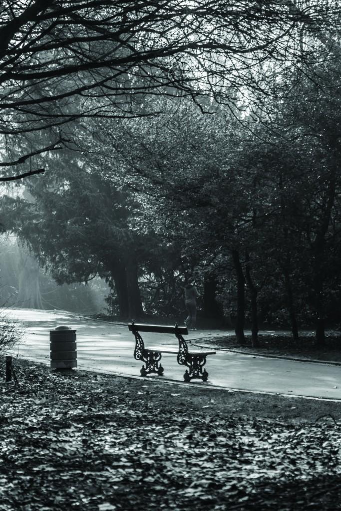 Josaphat Park 01